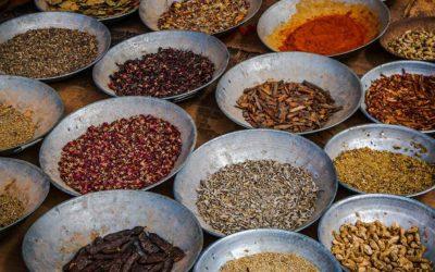 Vegane Ernährung nach Ayurveda
